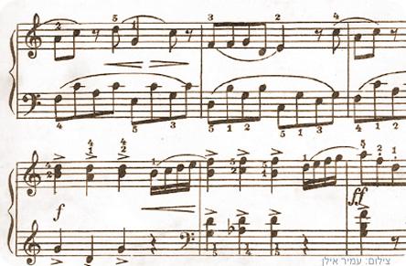 Vienna-notes.jpg